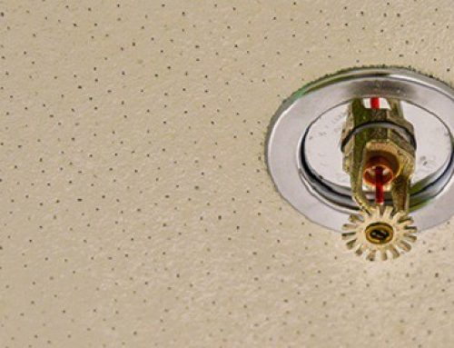 Wet or Dry Sprinkler System: Which is Right for your Business?